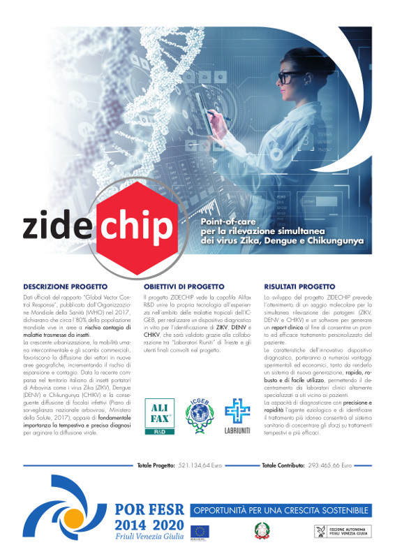 zidechip project